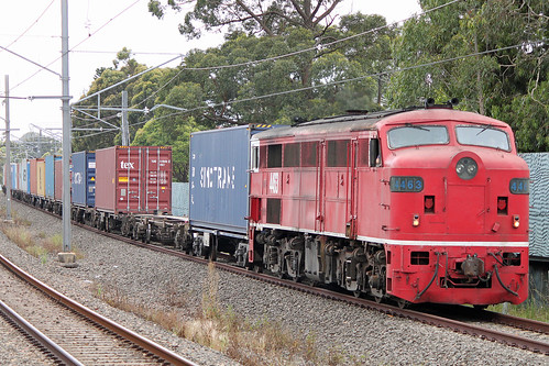 T251 1