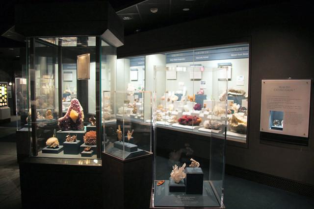 Natural History Museum Discount Membership