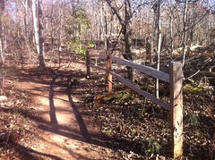 Fence Along Trail