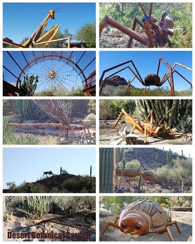 Desert Botanical Gardens Bugs Art Exhibit Sweet Shoppe Mom Phoenix Az Blogger