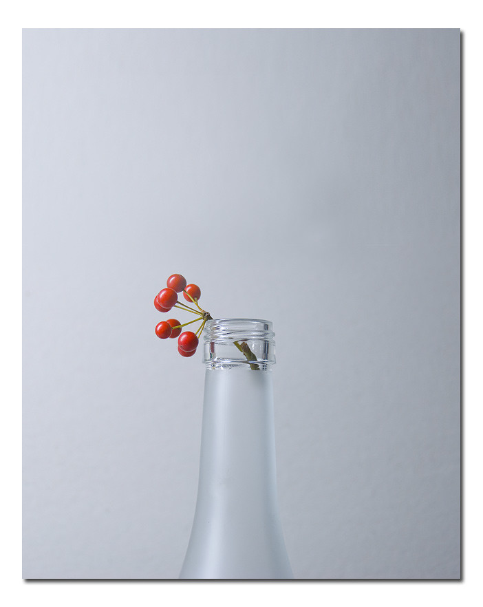 Simplicity - Creative Still Life Photography