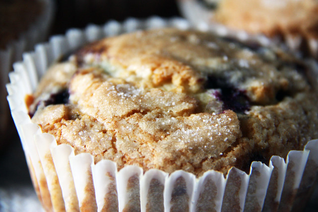 blueberry coffee cake muffins | Flickr - Photo Sharing!