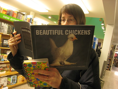 """Beautiful Chickens"" by Bart King"