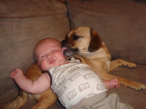 kids and pets.jpg 3