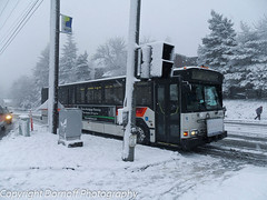 TriMet Gillig Phantom 2152 in a snowstorm.