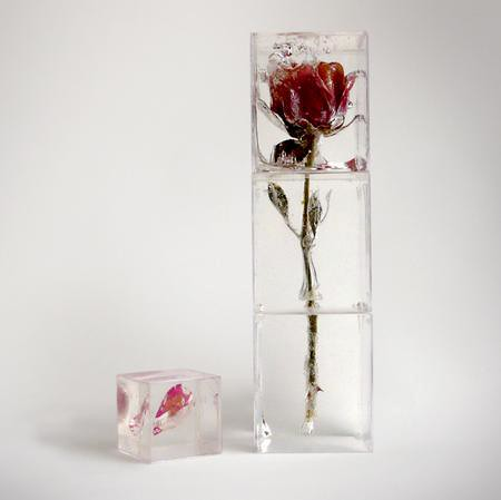 rose petal ice cubes 5