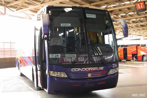 Cóndor Bus | Terminal San Borja | Busscar Vissta Buss LO / YU5572