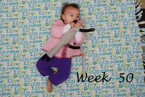 Week 50 Jan 22 2012