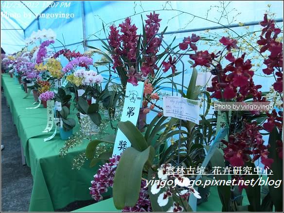 雲林古坑_花卉研究中心20120123_R0050672