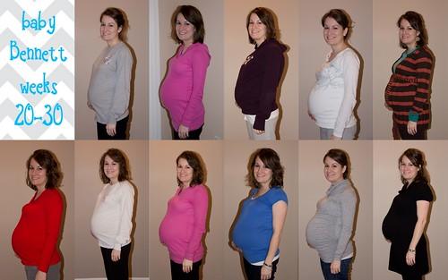 20-30 weeks