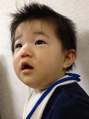 とらちゃん!(2012/1/29)