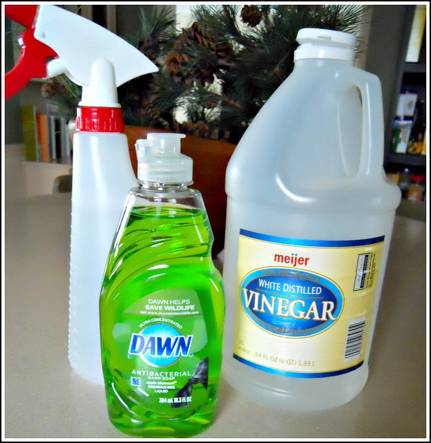 Homemade Shower Cleaner - Andrea Dekker