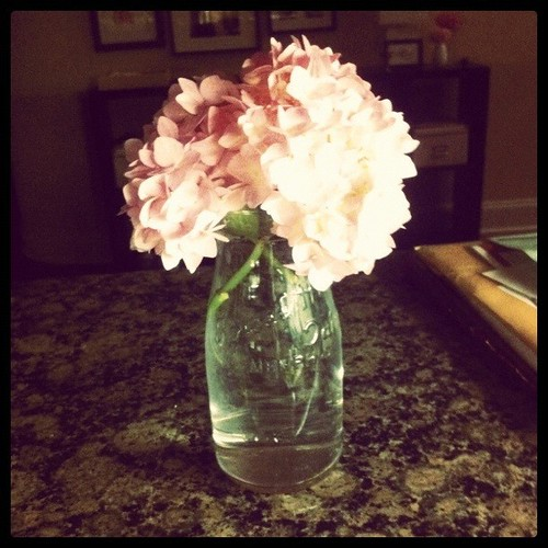 {Day 23: Something Old} Vintage Dairy Glass #janphotoaday #catchup
