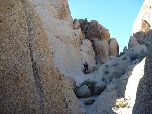 Ilana on the rocks