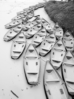 Frozen Boats