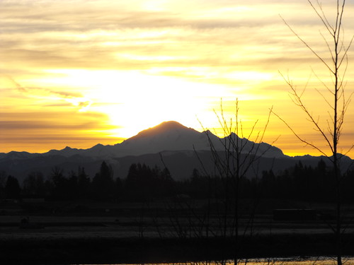trees clouds sunrise scenery bc britishcolumbia langley mtbaker fraservalley lowermainland