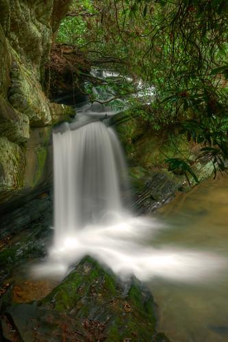 longexposure winter georgia outdoors waterfall rhododendron naturephotography perfectlighting rapercreekfalls