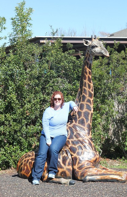 Jessica and a giraffe at Houston Zoo