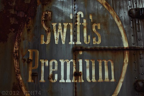 Swift's Premium by William 74