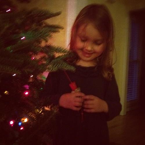 Maggie Tree
