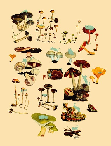 poster of cats climbing on mushrooms