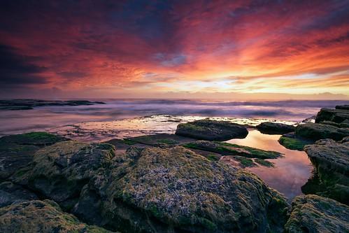 seascape beach water sunrise canon landscape colours seascapes sydney flickrmeetup canonef1740mmf4l turrimetta flickrxmas jamesbreeze canon5dmkii magicalskies notherbeaches