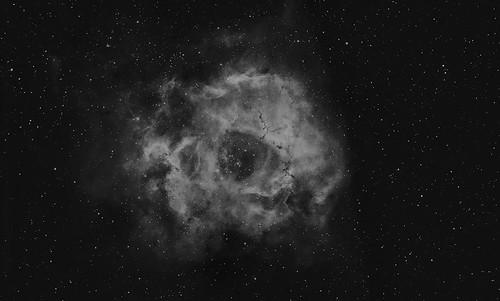 The Rosette Nebula in Ha