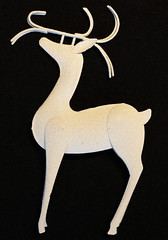 antler, deer, white, illustration,