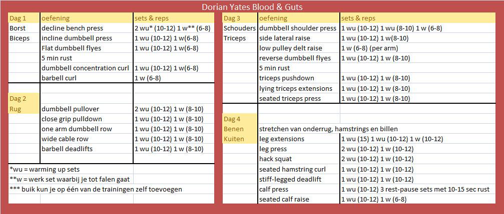 DY trainingsschema
