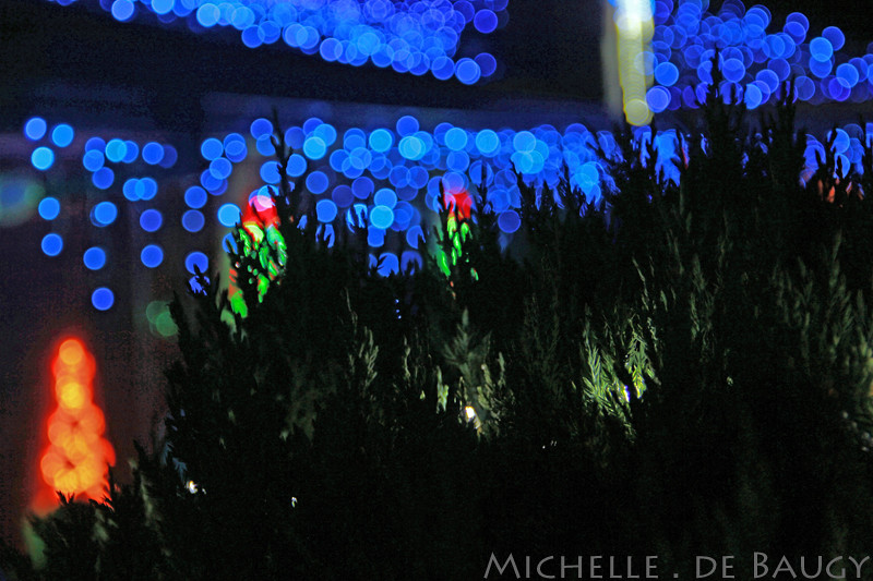 christmaslightsblog003