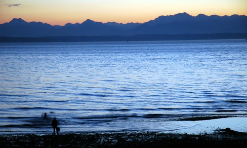 Fetch, twilight, Olympic Mountain Range, Carkeek Park, Seattle, Washington, USA by Wonderlane