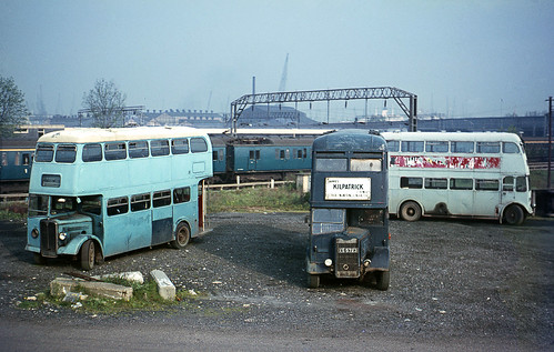 Kilpatrick(Contractors) AEC & Guy at Tilbury, May'67.