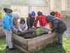 Ricominciamo a coltivare nelle scuole 60