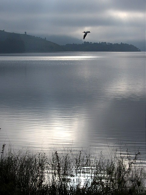 first light christmas day, lake bunyonyi