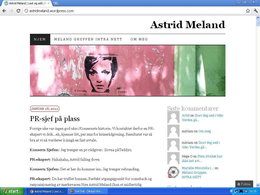 mer om astrid meland blogg paint