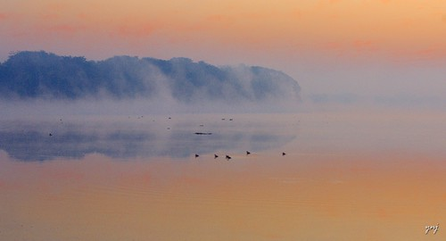 Misty Waters by Yogendra174
