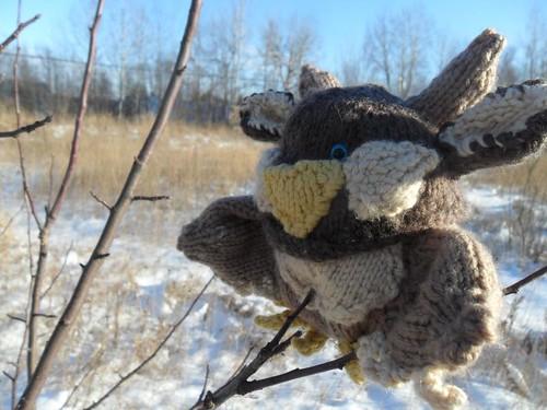 Knit Moonkin