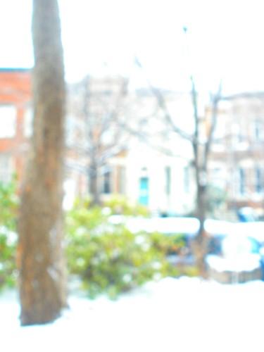 bokeh snow