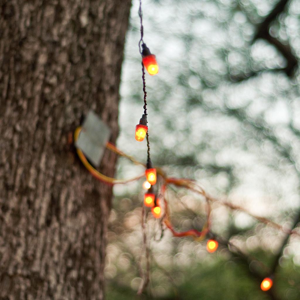 String Lights Bokeh iJuhi Photography