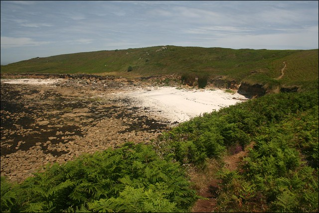 Porth Seal, St Martins