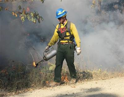Prescribed burn.  U.S. Forest Service Photo