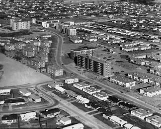 Meadowlands, 1963