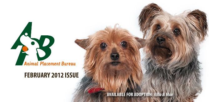 APB February 2012 Newsletter