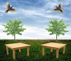 Two Doves, Two Tables And Two Trees