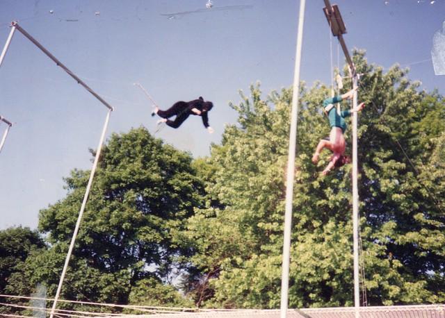 bloomington blue footed gorilla flickr photo sharing
