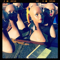 Alameda Flea Heads
