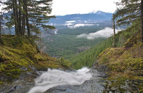 nature creek outdoors washington scenery hiking greenery darrington snohomish hollymariecombs suiattle
