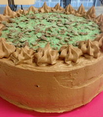 Chocolate Peppermint Crisp Cake