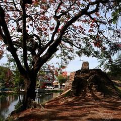 20100521_0690 Chiangmai City, เมีองเชียงใหม่