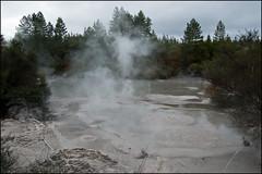 Wai-O-Tapu mud pool